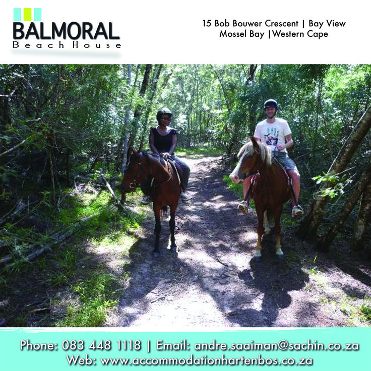 Mountainview Horse trails is situated at the foot of the Outeniqua Mountains in a Paradise called Wilderness. They offer horse trails to suit your level of experience and budget! The emphasis is on having fun, while experiencing nature in a unique and unforgettable way.  #Wilderness #GardenRoute #Activities