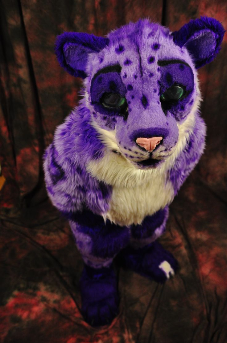 QuyetPawz fursuit made by Guinn's Custom Creatures. Photo taken by Feathered Dragon.   QuyetPawz will be at Furnal Equinox 2014