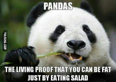 Salad must be unhealthy