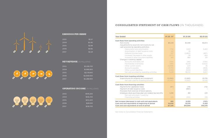 Financial Statement Annual Report  Design Ideas