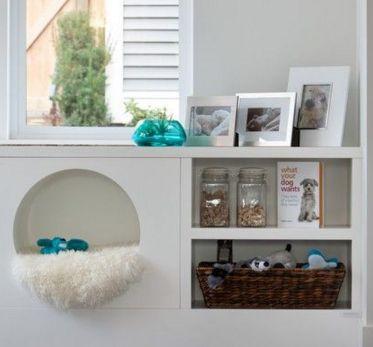PET NUMA ESTANTE | qualquer cantinho de uma estante pode virar rapidinho uma cama para seu pet; basta um cobertor felpudo e pronto! #petbed #diy #petdecor #Tecnisa Foto: OnlineMagazine