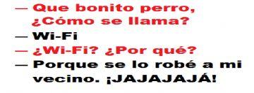 Frases Para Facebook Chidas - IMAGENES CHISTOSAS | IMAGENES GRACIOSAS | FOTOS GRACIOSAS | CHISTES CORTOS |