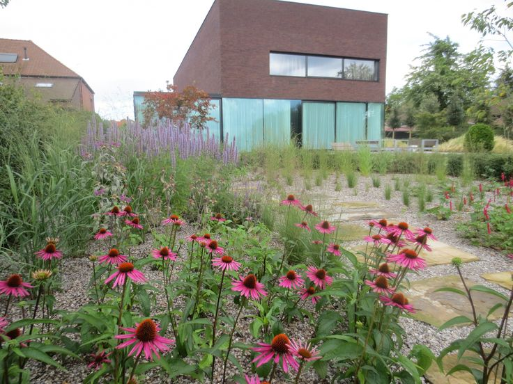A prairie garden with a modern house, a contrast done right. By Avantgarden.