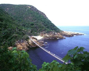 "Suspension bridge in Tsitsikamma National Park, near Knysna, South Africa  (The word ""Tsitsikamma"" comes from the Khoekhoe language tse-tsesa, meaning ""clear"", and gami, meaning ""water."")"