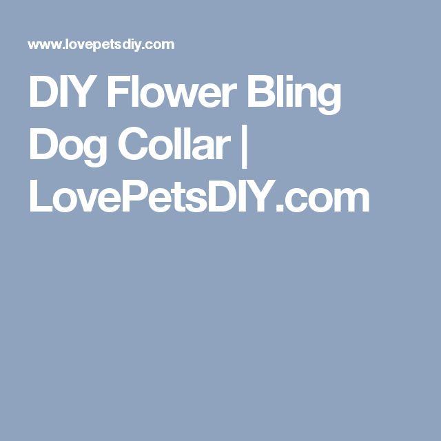DIY Flower Bling Dog Collar | LovePetsDIY.com