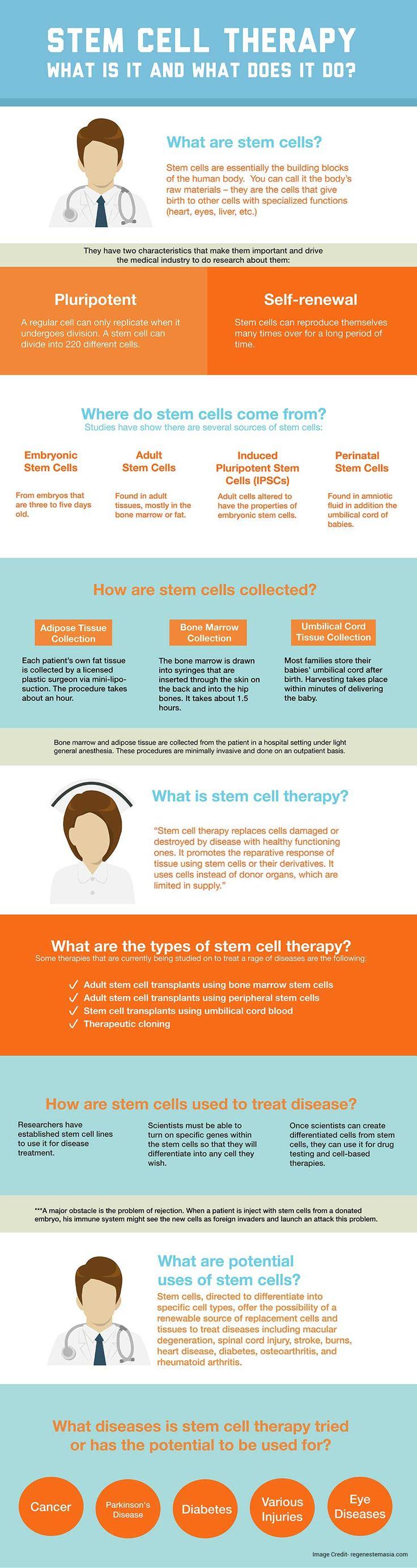 8 Best Stem Cells Images On Pinterest Stem Cells Stems And Trunks