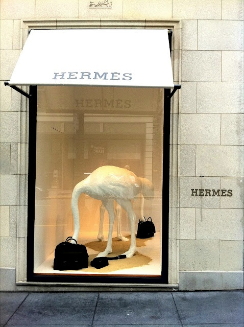 the two dog blog: HERMES WINDOWS - a break from the sf whirl, a reason to breathe easy and smile.