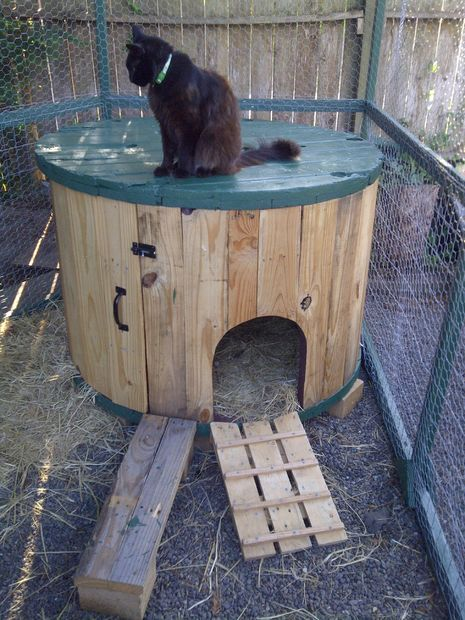 Make a ramp with the remaining chicken / duck house made from repurposed wire spool