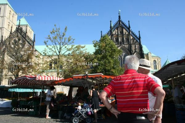 Bildagentur BILD.MS   Markt Domplatz    - Bilder Fotos Archiv Datenbank in Muenster. Schon ab 2,00 EUR ( Weblizenz S ) professionelle Fotos aus Muenster und andere Fotos fuer ihre geschaeftlichen Internetauftritt - Bildagentur : www.bild.ms