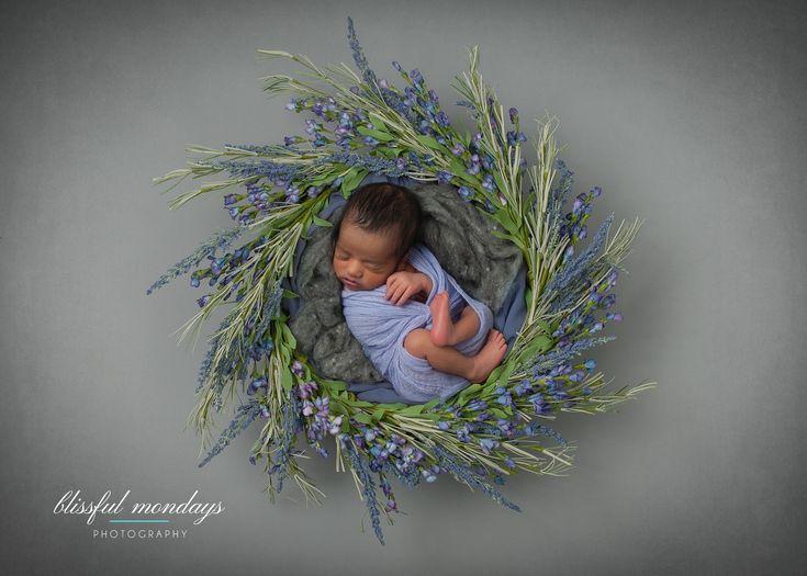 Blissful mondays photography portland oregon oregon newborn baby photographer digitalbackdrops