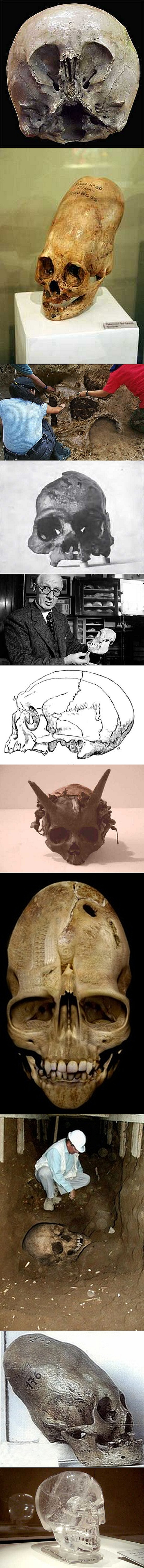 "Fake - Including Starchild, Crystal Skulls, Andover Vampire, Horned Skulls, Misshapen(elongated) Skulls, Piltdown Man, Calveras Skull, Batavus Genuinus, Giant Skulls and variations of the above. - There is no proof of any and many have been ""proved false"". Others are unverifyable and claims are unproven and based on hearsay and  tricks of photography. Many have mysteriously disappeared or the owners don't allow testing. A link is included to discussion of many of the fakes......"