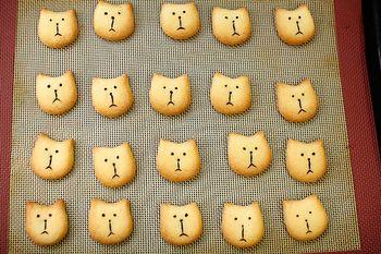 京都にある小さな焼き菓子工房「キャリコ」。 三毛猫という意味を持つ店名から想像できるように、 可愛らしい猫の焼き菓子が特徴的です。