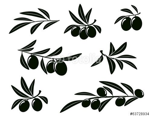 Вектор: set of olive branch