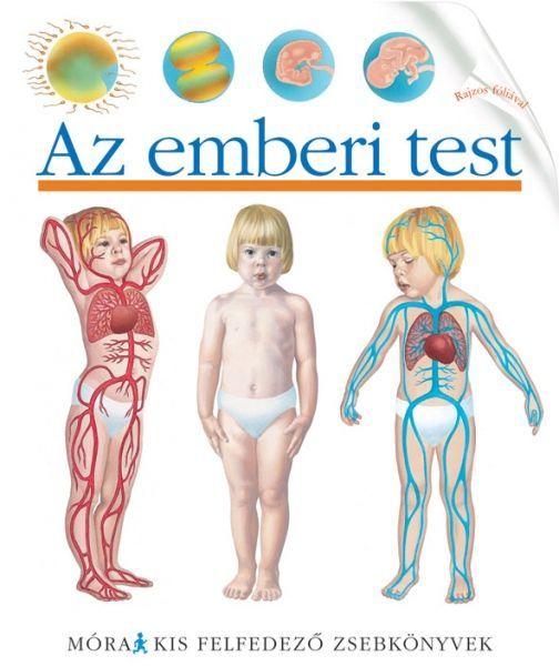 Az emberi test - Kis felfedező zsebkönyvek http://sokatolvasok.hu/az-emberi-test-kis-felfedezo-zsebkonyvek