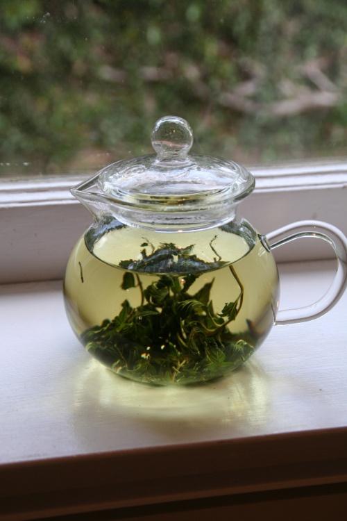 fresh mint tea | Lavende, Thyme, Mente et Herbes de Provence | Pinter ...