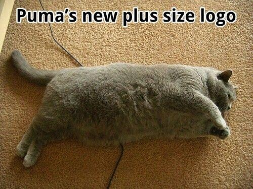 Puma.    For plus-sized people *public face and cheesy thumbs up*