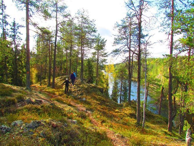 Wandern & Radfahren - Finnland Rundreisen - Saija Lodge
