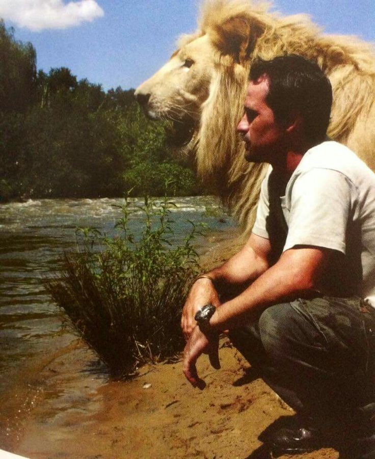 Kevin Richardson and his Lion