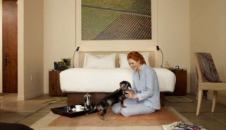 Napa Valley Woofers: Pet-Friendly Hotels
