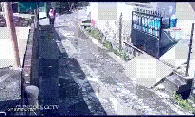 Ladrão que rouba ladrão tem cem anos de perdão