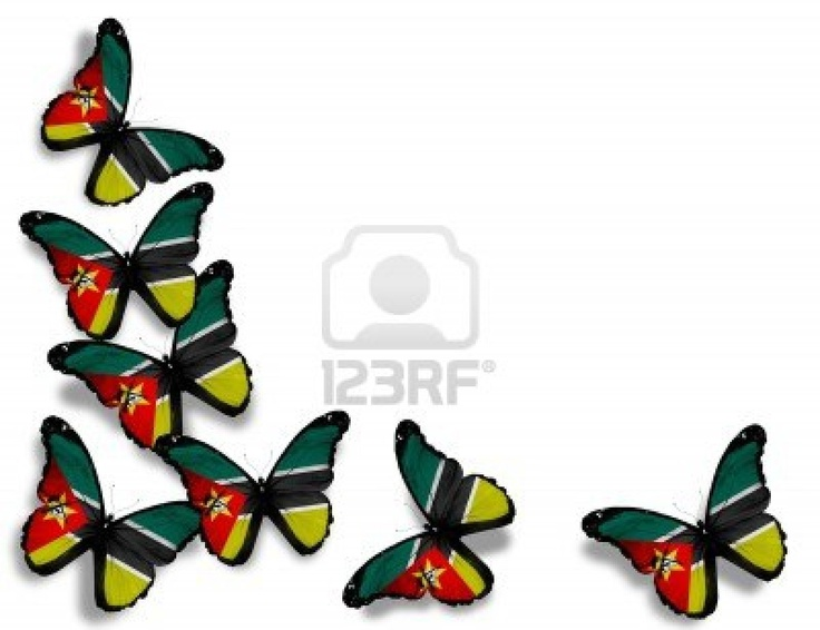 the butterfly's are paint as Mozambique flag