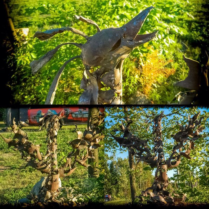 Phénix by Artiste les Tordus S.E.N.C.  another project in progress... phenix with scrap metal pieces #artistelestordus #artiste_les_tordus #artiste #les #tordus #scrapmetal #sculpture #Art  #metalsculpture #phenix #scrapArt #recycledArt