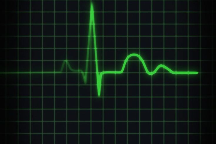 ¿El potasio bajo puede causar una frecuencia cardíaca lenta?. Abundante en frutas cítricas, aguacates (avocados), patatas (potatoes), tomates, carnes y muchos tipos de pescados, el potasio funciona como un mineral y un electrolito en el cuerpo humano. Si bien juega un rol crucial en la contracción ...
