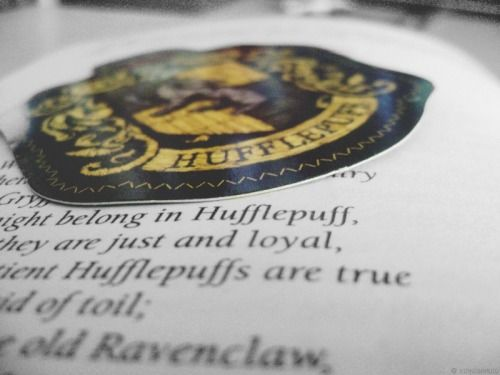 "Hufflepuff House.  Symbol: Badger Colours Yellow and Black Element: Earth Relic: Hufflepuff's Cup Common Room: In the basement, near the kitchens.  Positive Defining Traits: Loyalty, open-mindedness, determination, hard working, values fair-play and equality. Negative Defining Traits: Often thought as ""the rest""  Founder: Helga Hufflepuff"