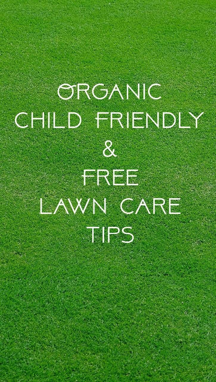 Organic, child friendly and free lawn care tips. Budget gardening advice and thrifty tips for frugal family life