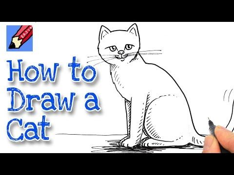 how to draw a cat for kids youtube