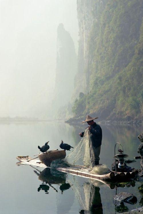 Google+Рыбалки с бакланами на реке ли Гуйлинь, Китай.