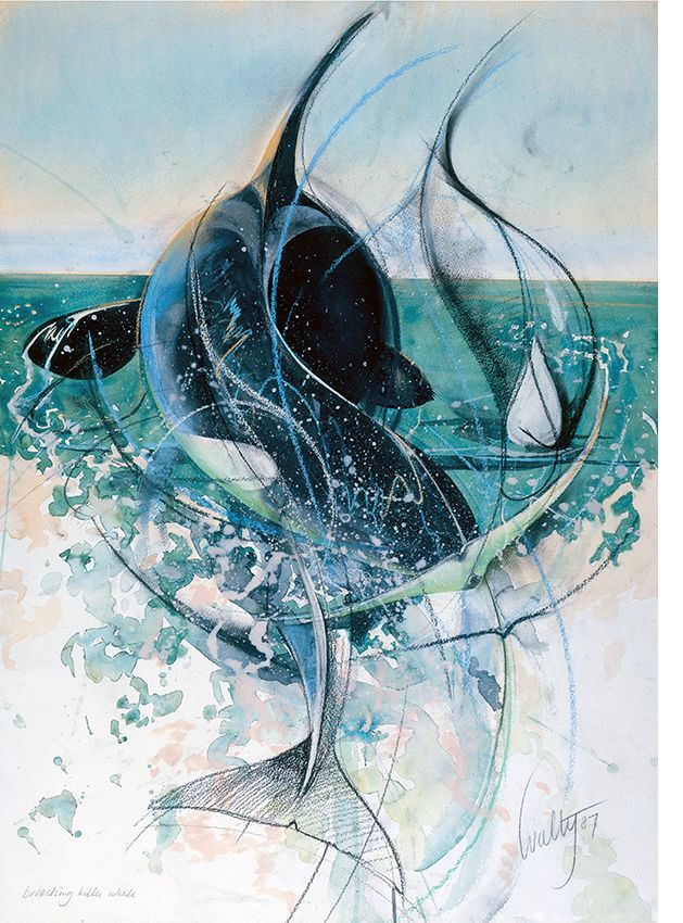 Walty Dudok van Heel - orka - orca