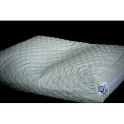 Premium Buckwheat Hull Pillow | Overstock.com Shopping - Great Deals on Pillows