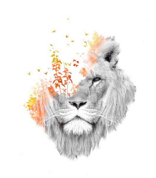 Gorgeous Lion And Nature Transformation Art