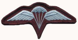 Aussie Airborne Para Jump Paratroopers Wing