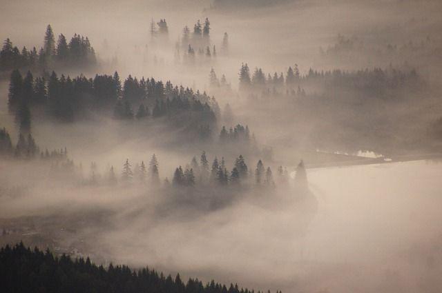 Hochlantsch, 山, 霧の海, 日の出, 霧, 気分