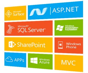 Global asp.net outsource software development rotates around specific factors…