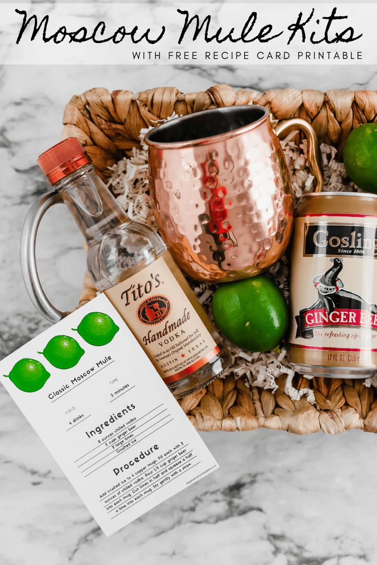 Moscow Mule Kit with Free Printable Moscow mule kit