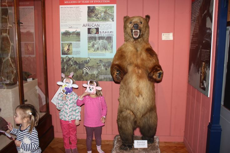 We couldn't find a gruffulo at our Early years event 6/12/13 but we did find a bear