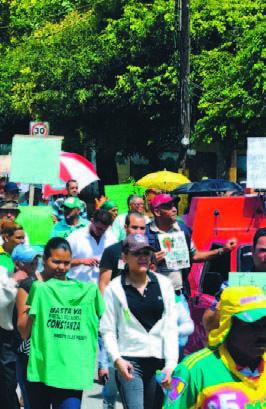 Marchan En Constanza Reclamando El Cese De La Tala De Árboles