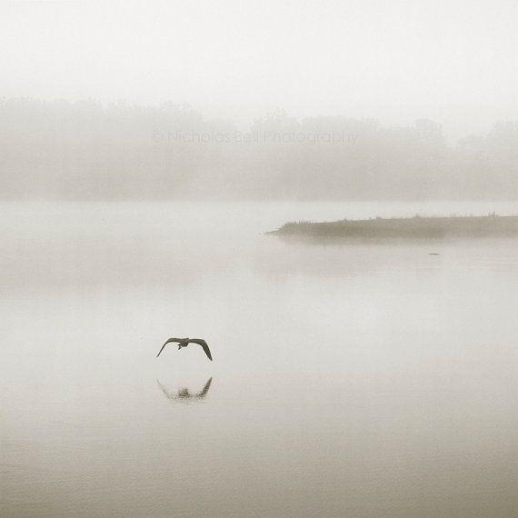 nature photography, minimalist photography, fog photography, landscape…