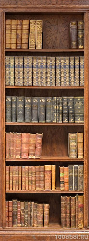 Фотообои на стену «Книжный шкаф». Divino A1-067 2800р