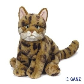 Webkinz himalayan cat names