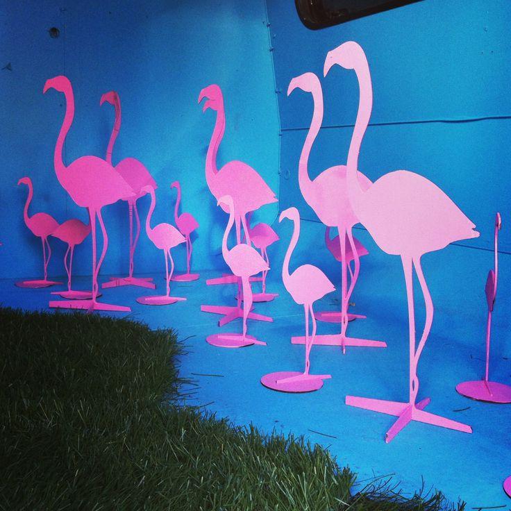 Flamingos @trailerparkfestival 2013