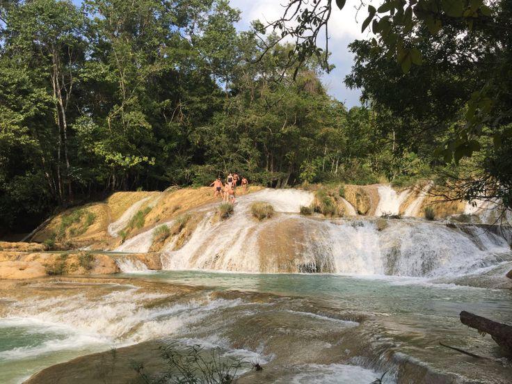パレンケの滝。Cascadas Roberto barrios