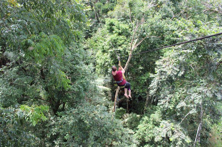 Rumble in the jungle in Peru