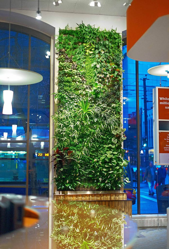 Green Walls This Living Work Of Art Can Be Seen At The Showroom ING Direct In Downtown Vancouver Howe Street Where They Serve Free Coffee
