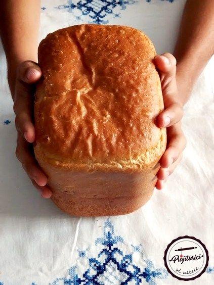 Masina de paine-detalii, intrebari si raspunsuri