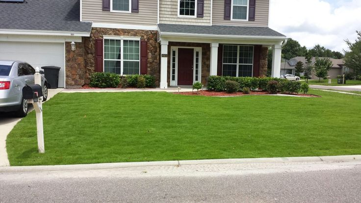 Emerald Zoysia Sod Maintenance