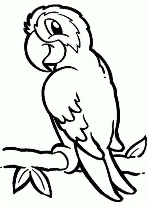 30 Great Photo Of Parrot Coloring Pages Albanysinsanity Com Bird Coloring Pages Animal Coloring Pages Pirate Coloring Pages